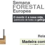 MADEIRA CONTRALAMINADA: relatorio técnico na ETSAC
