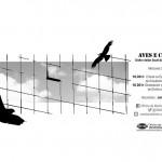 Charla e obradoiro: Aves e cristais,  unha visión local dun problema global