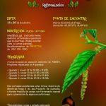 Reforestación participativa no Monte da Fraga